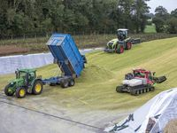 Best practice for making silage